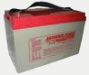 Absorbed Power 100 Amp Hour 12 Volt AGM Battery - GT12-100C 100AH Price $369.00